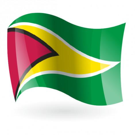 Bandera de Guiana