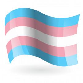Bandera Trans LGBTI