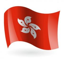 Bandera de Hong Kong ( Región Administrativa Especial )