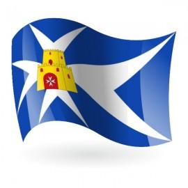 Bandera de Aliaga