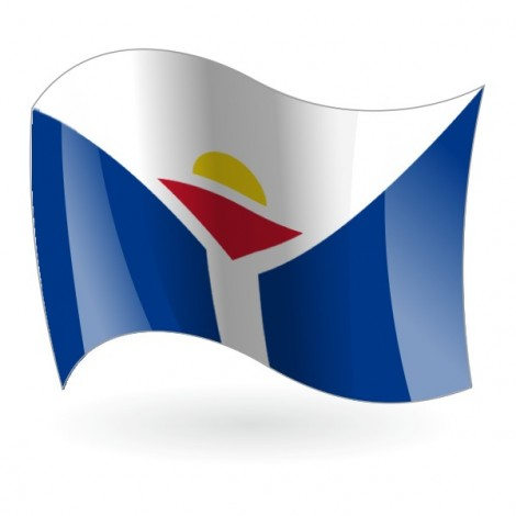 Bandera de San Martín ( Colectividad )