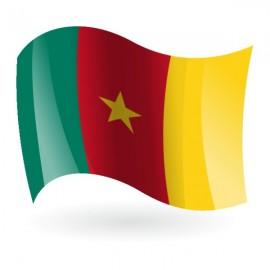 Bandera de la República de Camerún